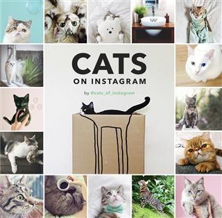Cats on Instagram als eBook Download von @cats_...