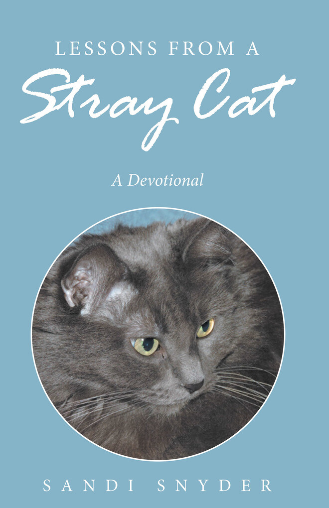 Lessons from a Stray Cat als eBook Download von...