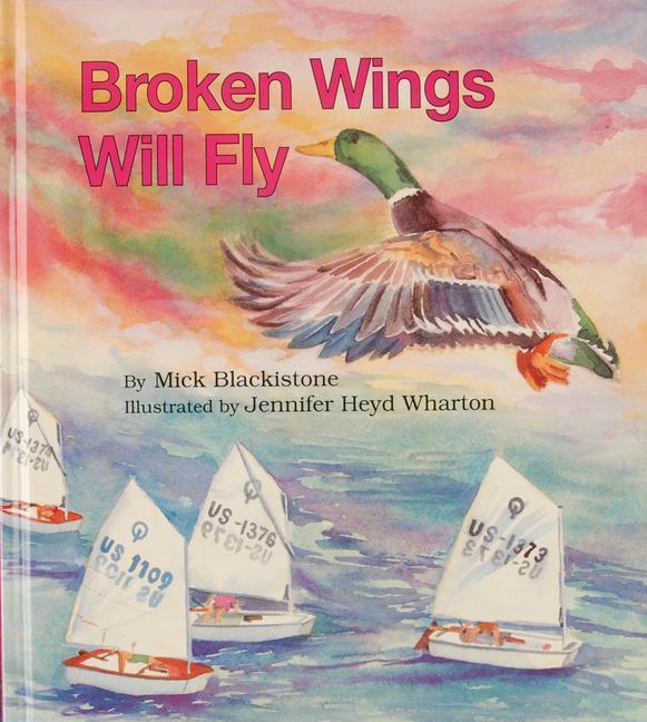 Broken Wings Will Fly als Buch