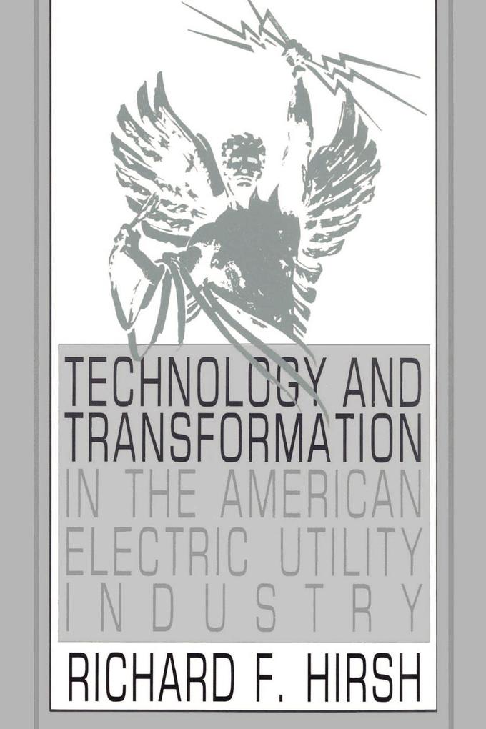 Technology and Transformation in the American Electric Utility Industry als Buch
