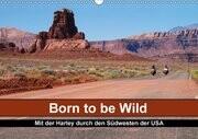 Born to be Wild - Mit der Harley durch den Südwesten der USA (Wandkalender 2017 DIN A3 quer)