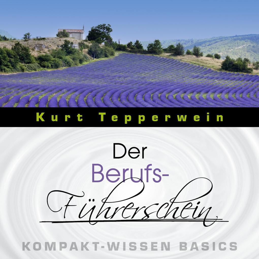 Der Berufs-Führerschein - Kompakt-Wissen Basics...