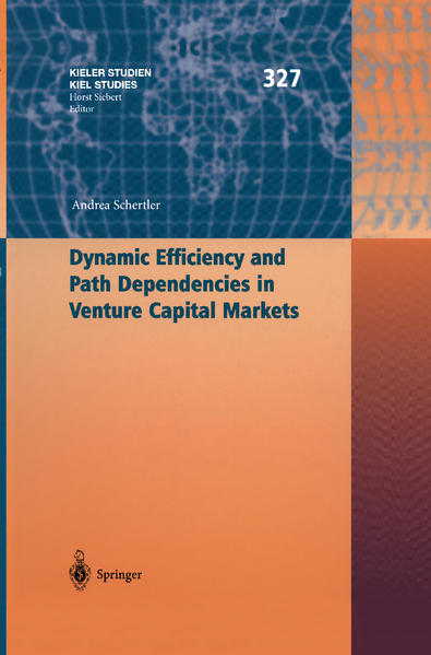 Dynamic Efficiency and Path Dependencies in Venture Capital Markets als Buch