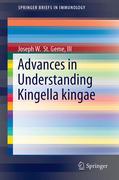 Advances in Understanding Kingella kingae