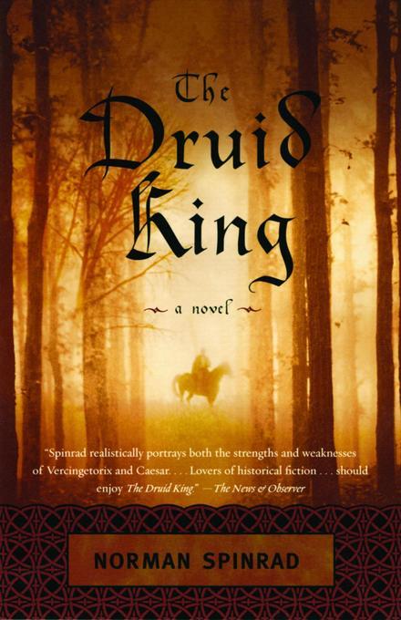 The Druid King als Taschenbuch