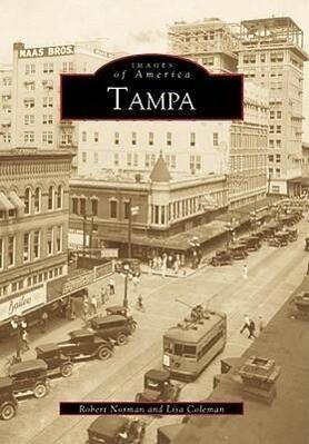 Tampa als Taschenbuch
