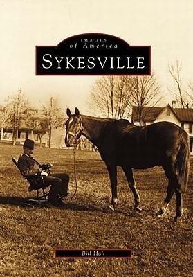 Sykesville als Taschenbuch