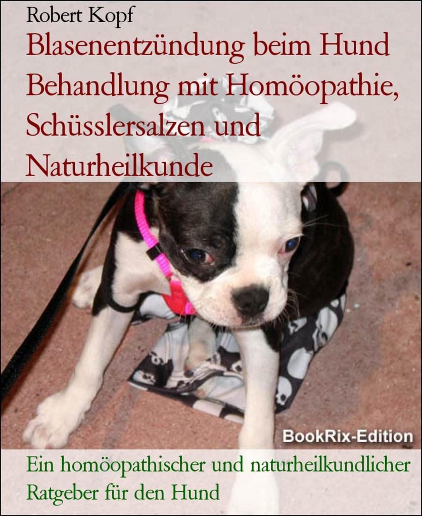 Blasenentzündung beim Hund Zystitis behandeln m...
