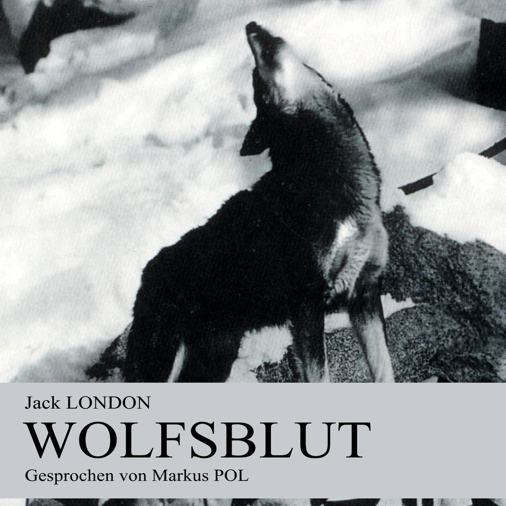 Wolfsblut als Hörbuch Download von Jack London