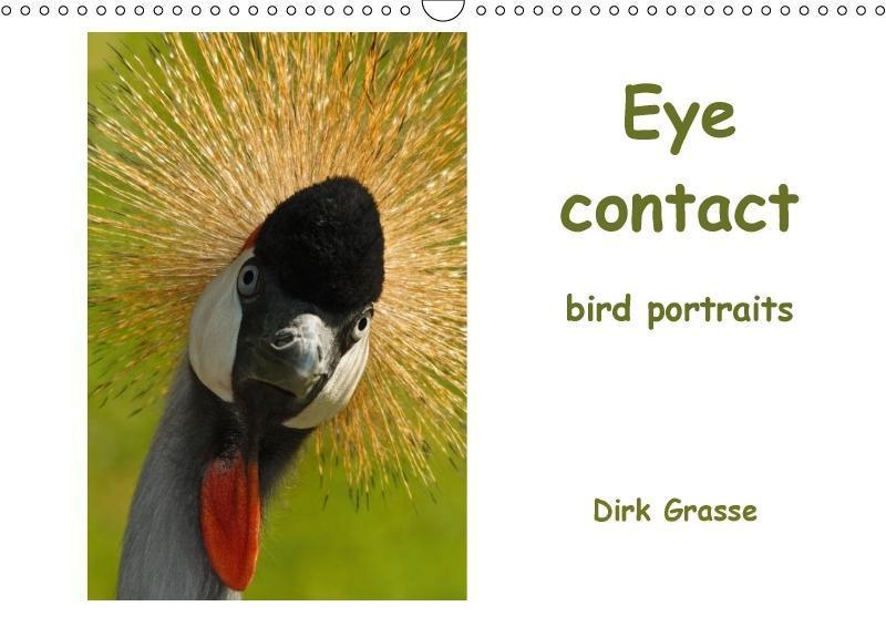 Eye contact - bird portraits / UK-Version (Wall...