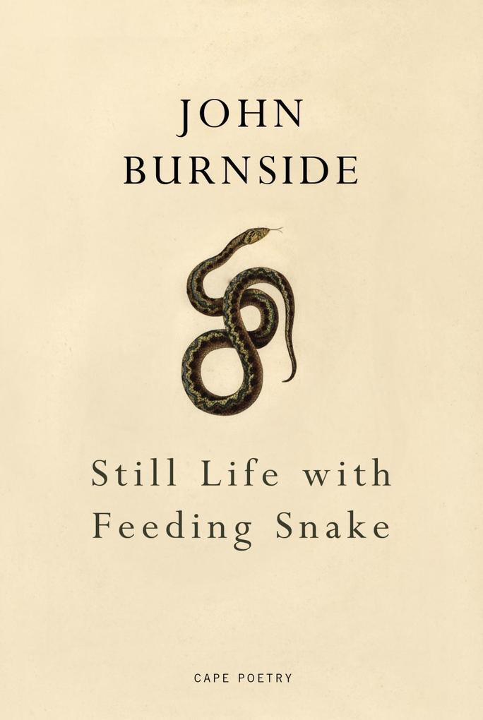 Still Life with Feeding Snake als eBook Downloa...