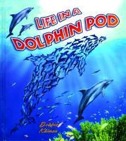 Life in a Dolphin Pod als Buch