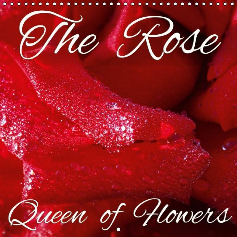The Rose - Queen of Flowers (Wall Calendar 2017...