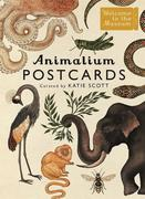 Animalium Postcards