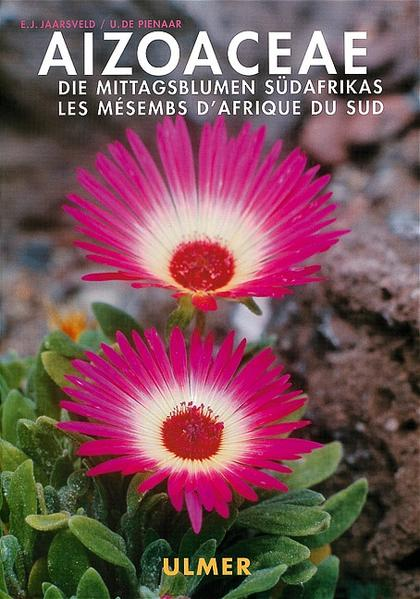 Aizoaceae als Buch (gebunden)