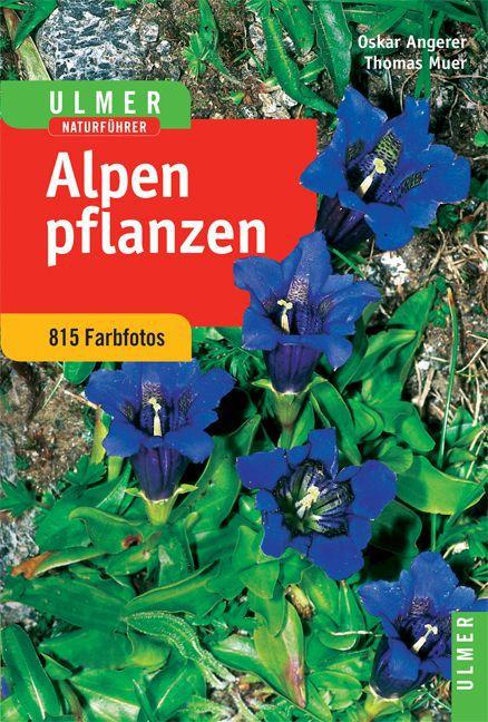Alpenpflanzen als Buch