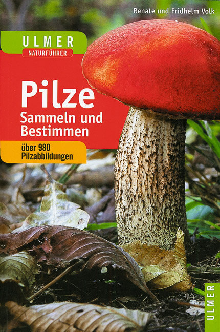 Pilze sammeln und bestimmen als Buch