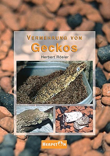 Vermehrung von Geckos als Buch