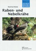 Raben- und Nebelkrähe