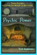 Psychic Power: Young Person's School of Magic & Mystery Series Vol. 2 als Buch