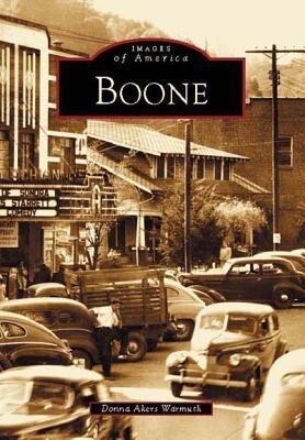 Boone als Taschenbuch