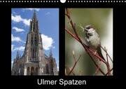 Ulmer Spatzen (Wandkalender 2017 DIN A3 quer)