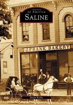 Saline als Taschenbuch