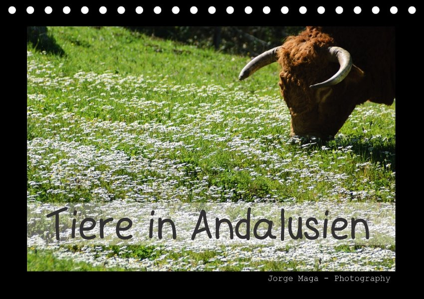 Tiere in Andalusien (Tischkalender 2017 DIN A5 ...