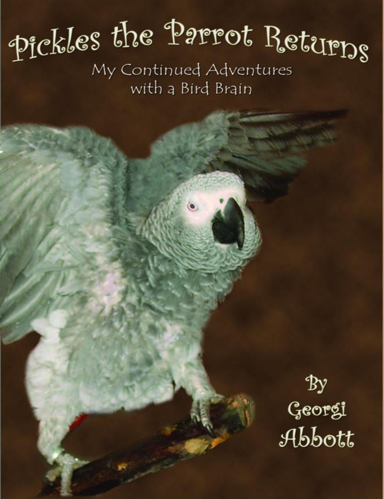Pickles The Parrot Returns: My Continued Advent...