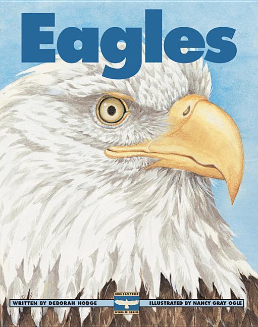 Eagles als Taschenbuch
