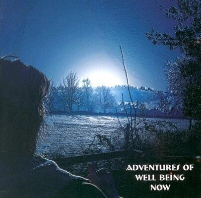 Adventures of Well Being Now als Hörbuch