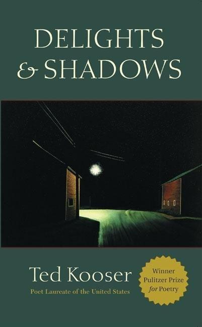 Delights & Shadows als Taschenbuch