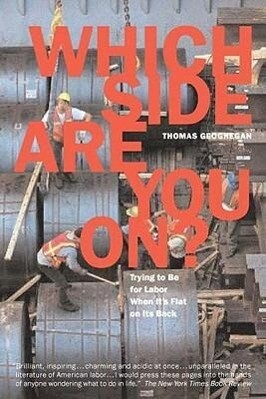 Which Side Are You On?: Trying to Be for Labor When It's Flat on Its Back als Taschenbuch