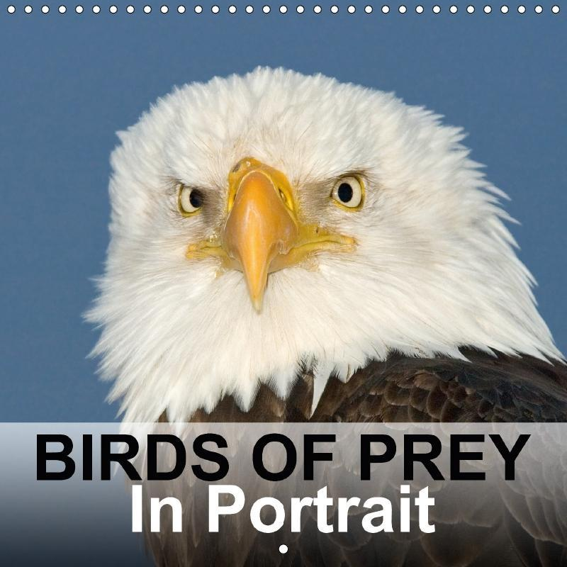 Birds Of Prey In Portrait (Wall Calendar 2017 3...
