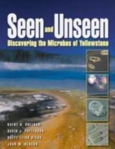 Seen and Unseen als Taschenbuch