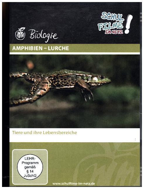 Amphibien - Lurche