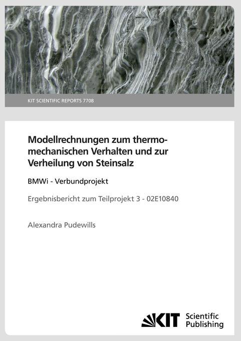 Modellrechnungen zum thermomechanischen Verhalten und zur Verheilung von Steinsalz: BMWi - Verbundpr als Buch (gebunden)