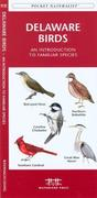 North Dakota Birds: A Folding Pocket Guide to Familiar Species