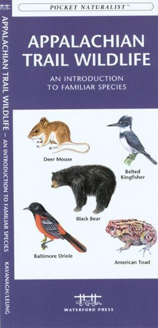 Golf Course Wildlife, Southern Arizona: A Folding Pocket Guide to Familiar Species als Taschenbuch