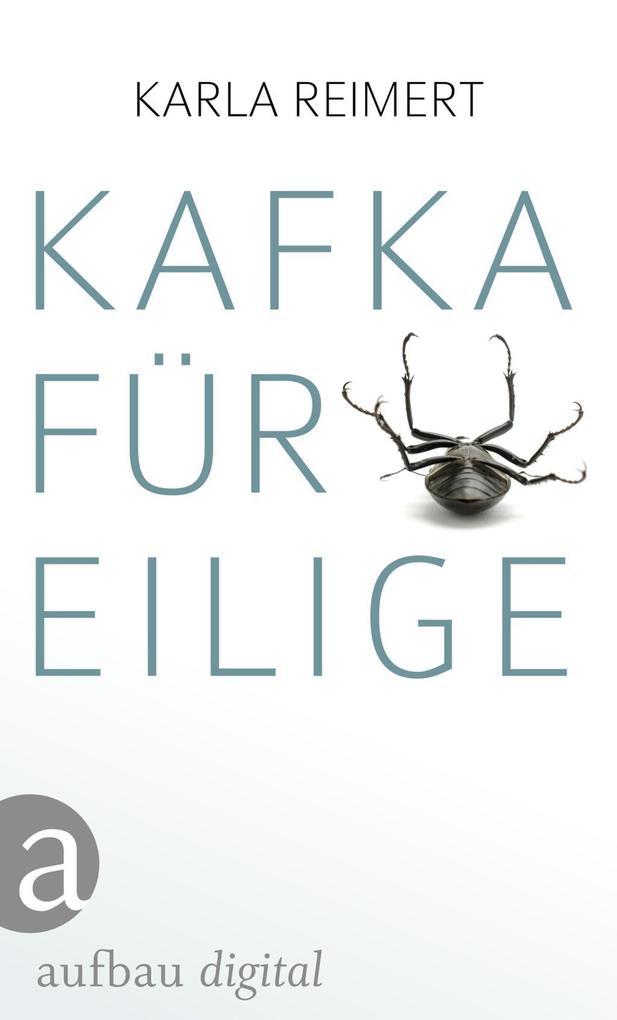 Kafka für Eilige als eBook epub