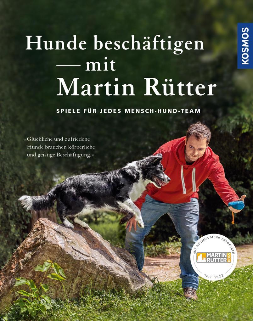 Hunde beschäftigen mit Martin Rütter als eBook ...