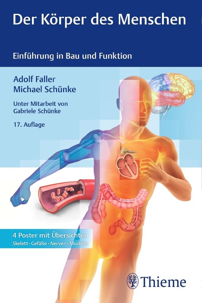 Der Körper des Menschen als eBook
