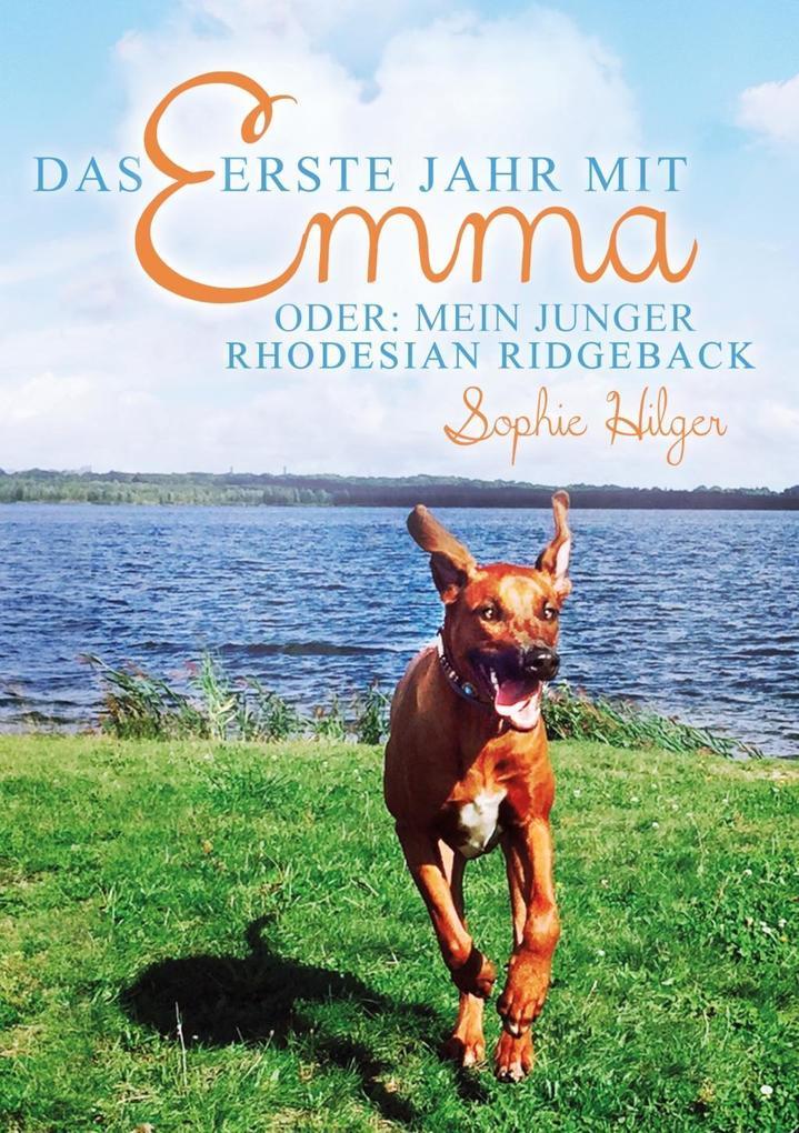 Das erste Jahr mit Emma als eBook epub