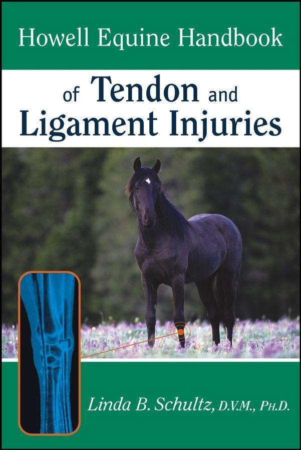 Howell Equine Handbook of Tendon and Ligament Injuries als Taschenbuch