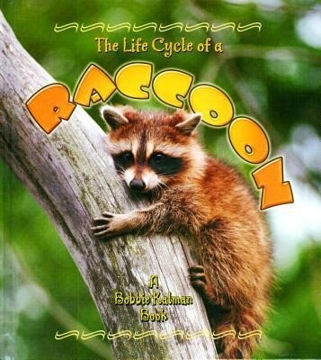 The Life Cycle of a Raccoon als Buch