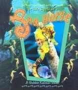 Life Cycle of a Sea Horse