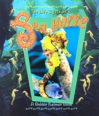 Sea Horse als Taschenbuch