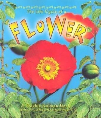 Flower als Taschenbuch
