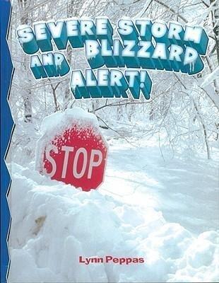 Severe Storm Blizzard Alert als Buch