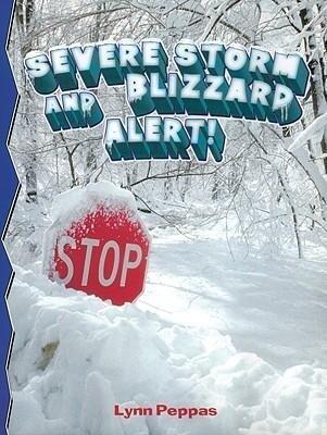 Severe Storm Blizzard Alert! als Taschenbuch